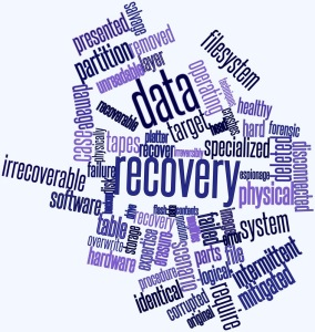 Data Recovery Terms